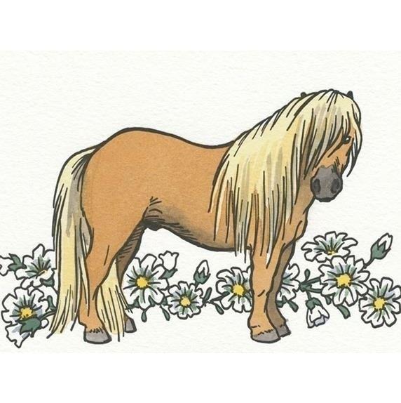 J & J Pony Rides