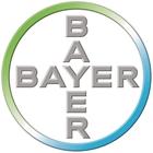 Bayer PP