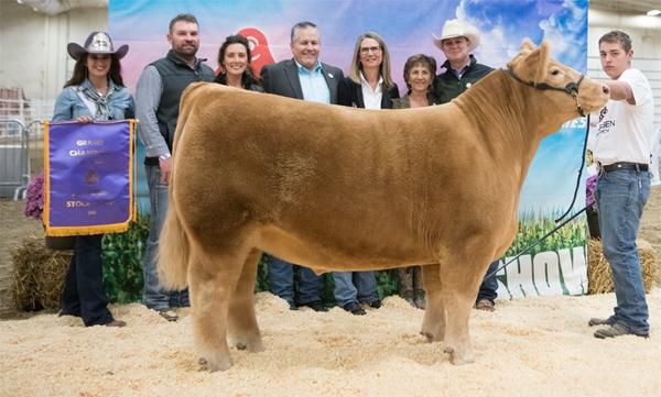 2018 Grand Champion Market Beef $18,000