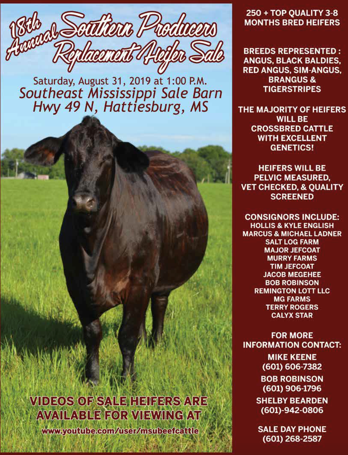 Southern Producers Replacement Heifer Sale