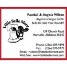 Little Belle Mont