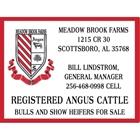 Meadow Brook Farms