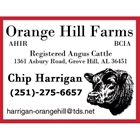 Orange Hill Farms