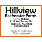 Hillview Beefmaster Farms