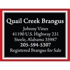 Quail Creek Brangus