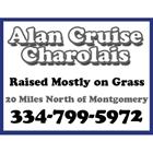 Alan Cruise Charolais