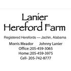 Lanier Hereford Farm