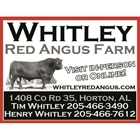 Whitley Red Angus Farm