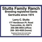 Stutts Family Ranch