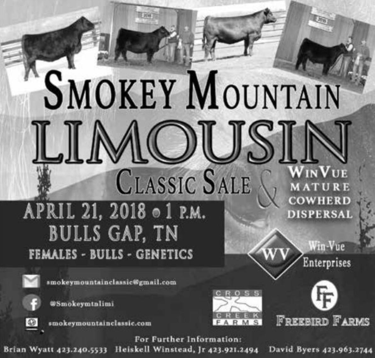 Smokey Mountain Limousin Classic Sale