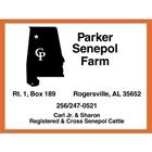 Parker Senepol Farm