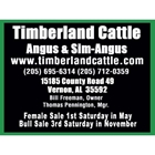 Timberland Cattle