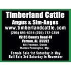 Timberland Cattle