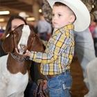PeeWee Livestock Show