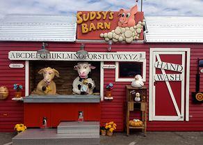 Sudsy's Farm