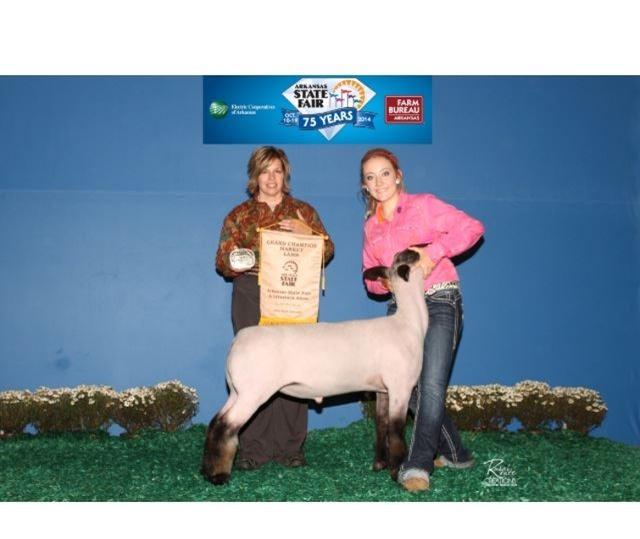 Grand Champion Market Lamb Kinsey Watkins