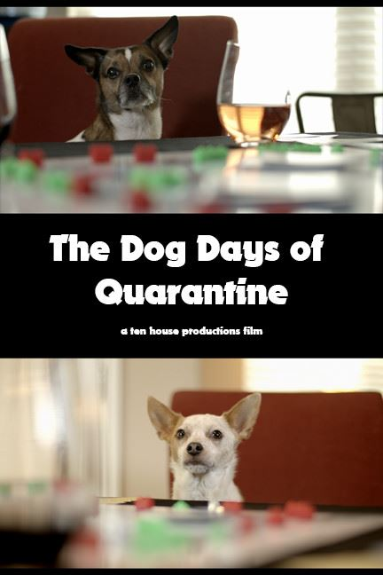 The Dog Days of Quarantine