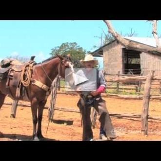 2E Twin Elm Guest Ranch