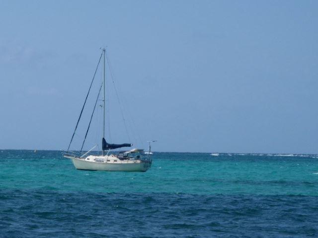 Windward Seaventure Yacht Charters And Sailing School