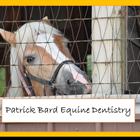 Patrick Bard Equine Dentistry