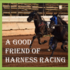 A Good Friend of Harness Racing