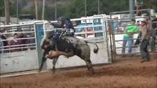 2016 Bedford County  Fair Video