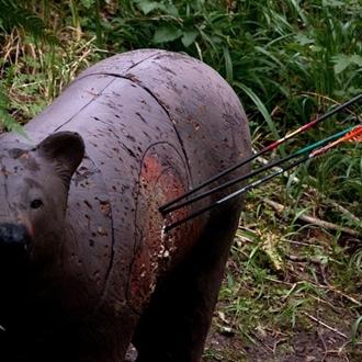photograph of 3-D bear target shot with arrows