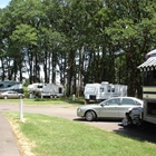 RVs parked at Benton Oaks Campground