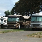 RVs parked at Benton Oaks RV Park
