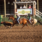 Rodeo scene in the Outdoor Arena