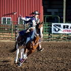 Rodeo royalty waving from horse as she rides around the arena