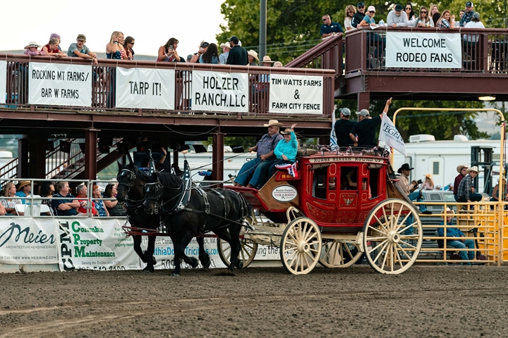 Rodeo pictures of horses and wagon