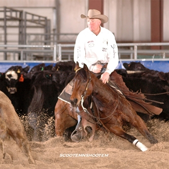 Equine Events Set the Stage for 2015 Black Hills Stock Show®