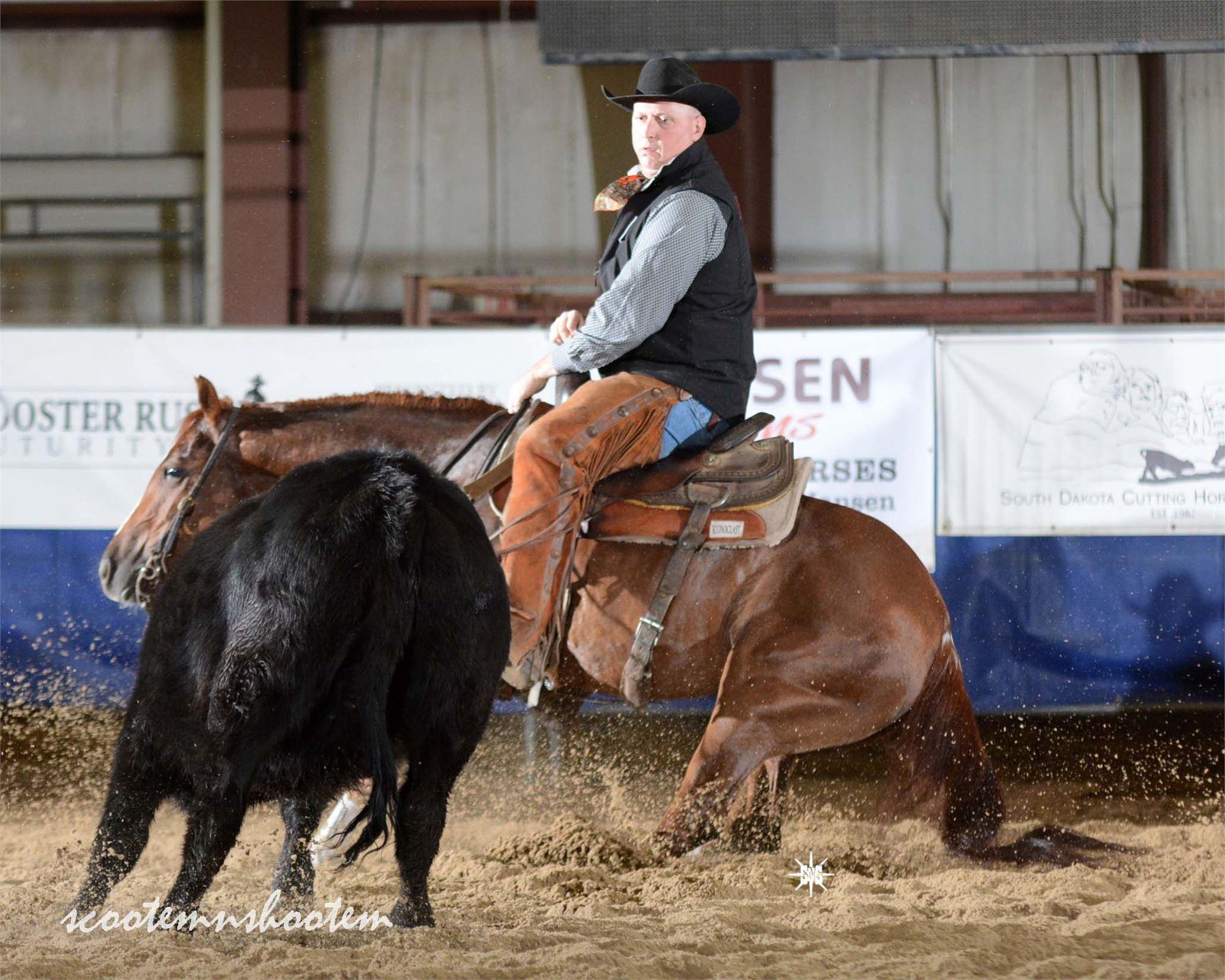 South Dakota Cutting Horse Assoc  Show