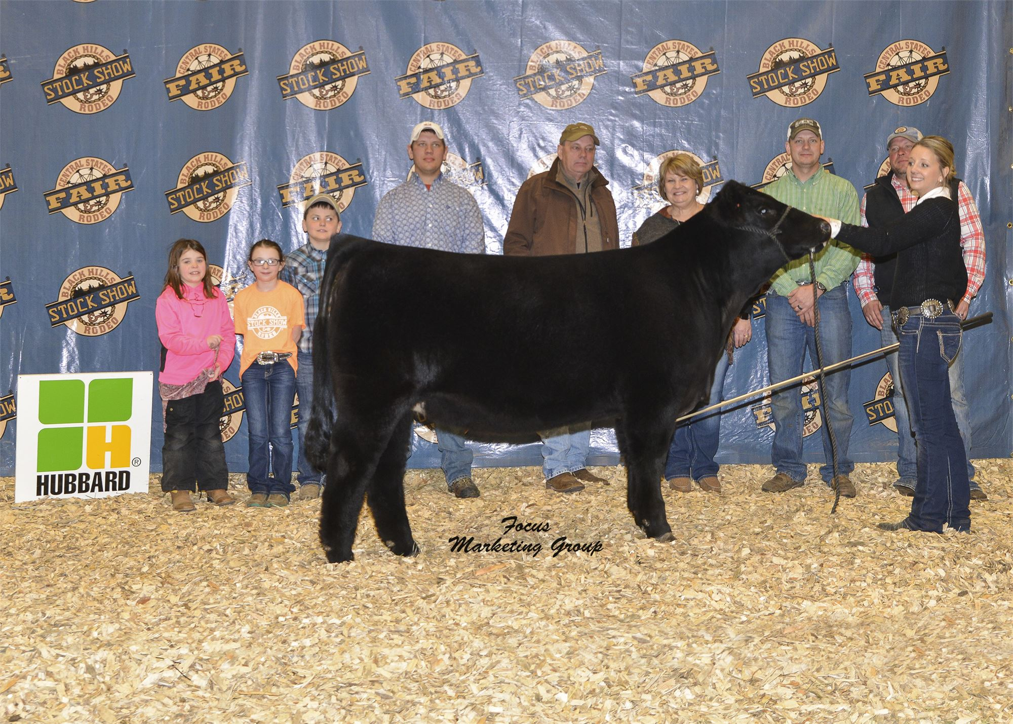 Simmental Show And Sale