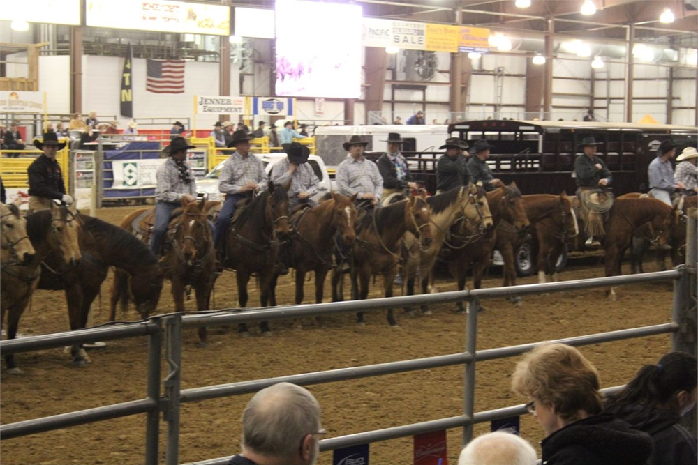 2013 Ranch Rodeo Grand Entry