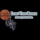 Long View ranch Branding Irons
