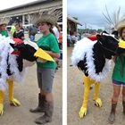 Bovine Costume Contest - After Open Class Beef F & S - after 1:00 PM