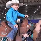 Little Folks Horse Show - 2:00 - 4:00 PM