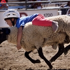 Mutton Bustin' at Challenge of Champions - 7:30 PM