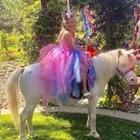 Pony Rides & Petting Zoo - 11 AM - 6 PM