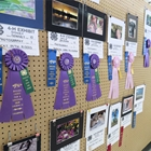 Open Class exhibit display with ribbons and placings