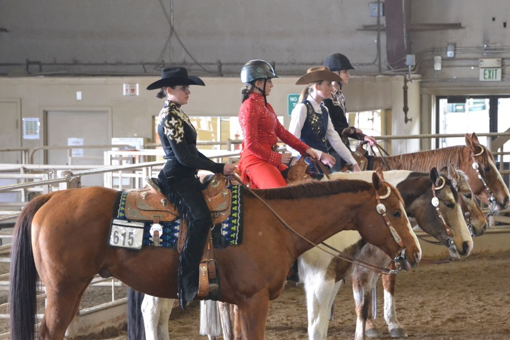 Three equestrians waiting to do a horsemanship pattern