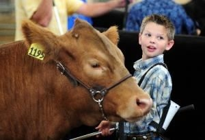 Small boy standing next to his cow smiling