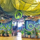 Bugology STEM Exhibit at the Fair