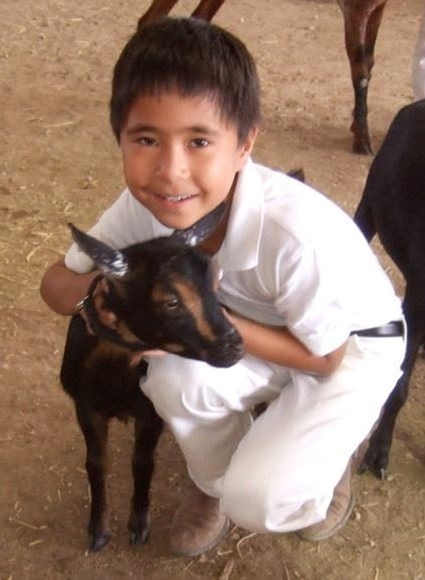 Young 4-H boy hugging his black and tan dairy goat