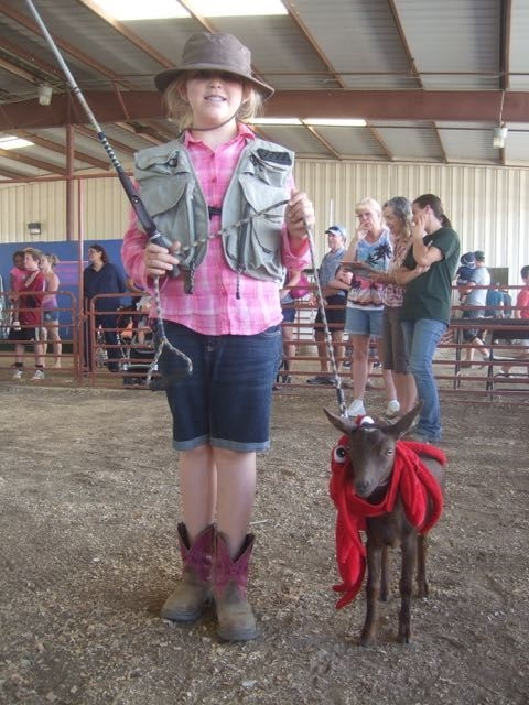 4-H youth walking a goat in a costume class