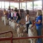 Fiber Goats