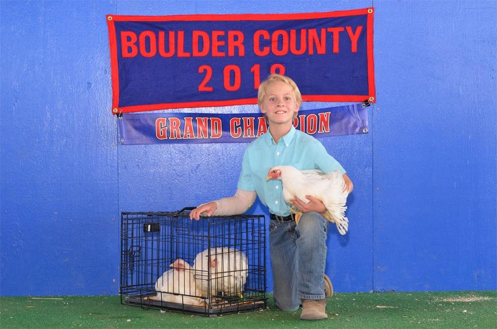2018 Grand Champion Market pen of 3 chickens
