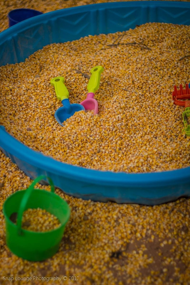 Corn for kids to play with in the Kid's Corral